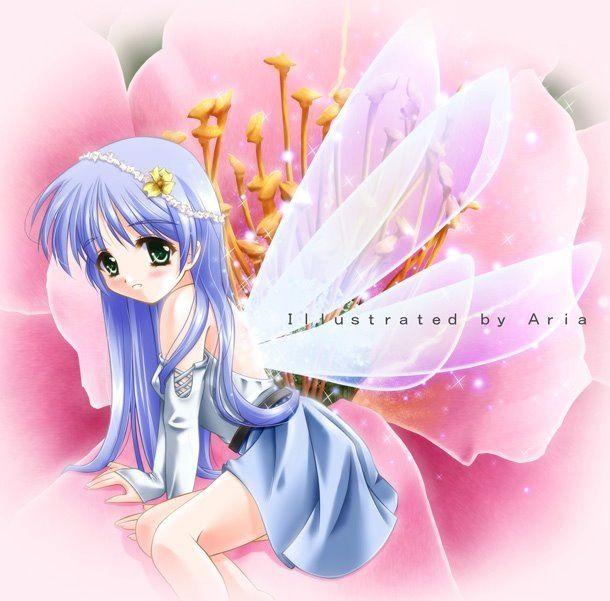 Cute Anime fairy