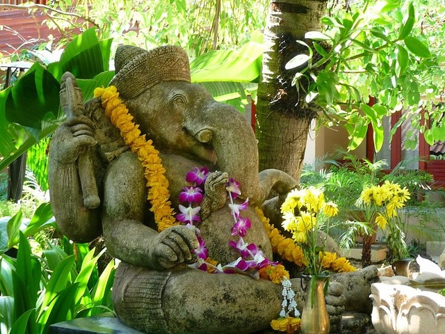 Ganesh in Phuket, Thailand #thomascook #travel