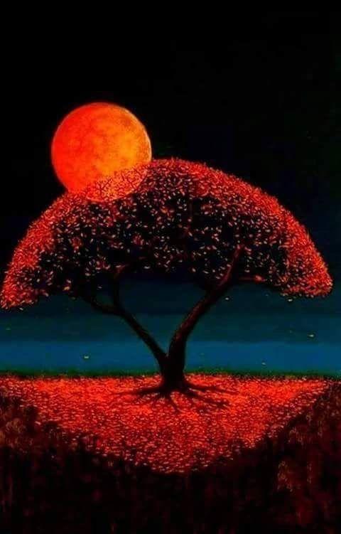 Les Noms de la Lune – www.paolacartotar…