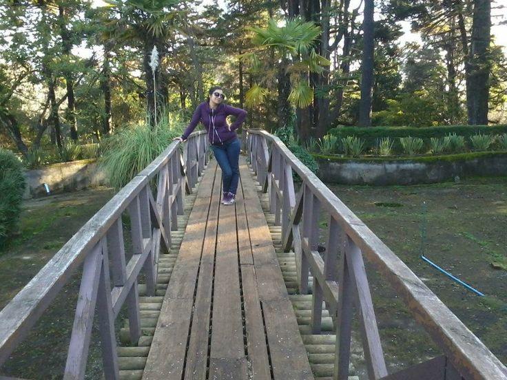 Puente en Pileta del Parque Isidora Cousiño