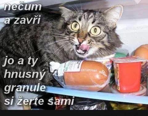 Nečum a zatvor! Jo, a tie hnusné granule si žerte sami!! :)))