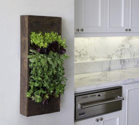 Ao lado da bancada da cozinha, esta horta vertical deixa as ervas aromáticas a um passo de distância!