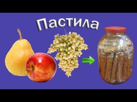 Домашняя пастила из яблок, груш и винограда в сушилке Изидри - YouTube