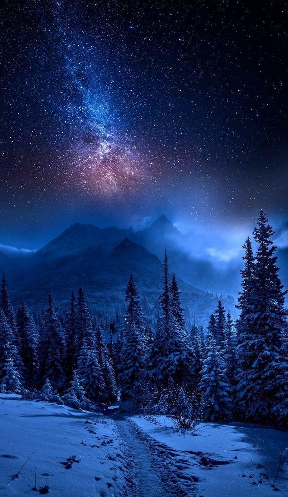 Apple Iphone 11 Pro Max Backgrounds خلفيات رائعة In 2020 Night Sky Wallpaper Night Sky Photography Iphone Backgrounds Nature