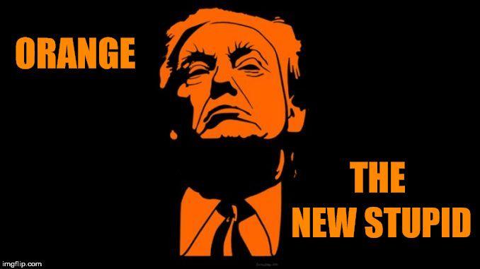 ORANGE NEW STUPID THE   image tagged in trump orange stupid   made w/ Imgflip meme maker