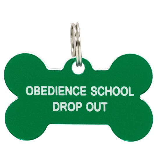 OBEDIENCE SCHOOL DROP OUT DOG TAG #DogObidience