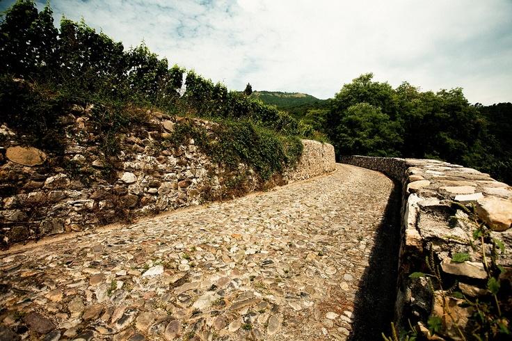 Una strada ciottolata in Franciacorta