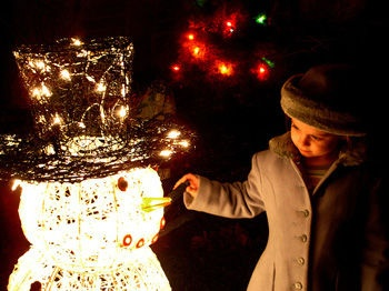 :)Holiday Lights, Winter Wonderland, Christmas Lights, Photos Tips, Photography Tips, Families Photos, Happy Holiday, Christmas Photos, The Holiday