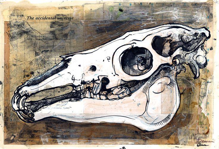 Duncan Cameron - Horse skull ink study www.duncancameron.org