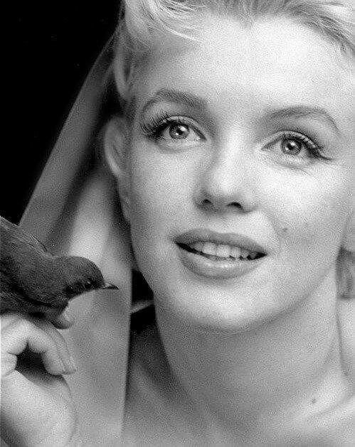 """""""Un retrato de Marilyn que se aleja de los clásicos clichés de rubia tonta o vampiresa. Hermosa foto"""""""