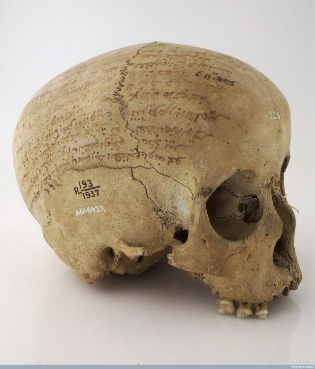 Cráneo inscrito con versos del Corán, del siglo 19. Recogido por Asante expedición Robert Baden Powell 's (Ghana) en 1895.