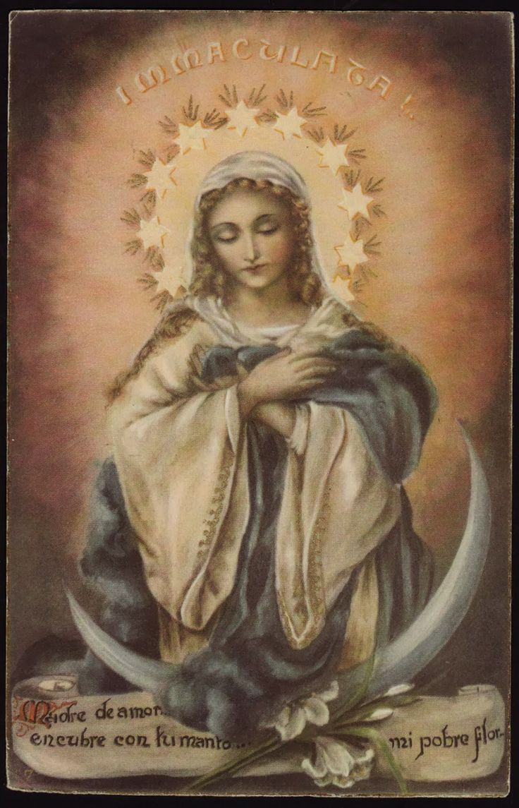 Picture of the blessed virgin are right