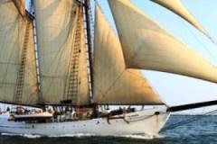 tall sailing ship: Sailing Maine, Hour Tall, Sailing Ships, Tall Ships, Ships Boats, Ships Sailing, Canvas Sailing, Vineyard Tall, Tall Sailing