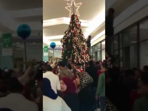 Muslims See A Christmas Tree Being Setup At A Mall, Then Start Attacking It! (VIDEO) ⋆ Freedom Daily
