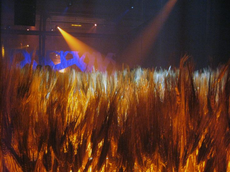 Drambuie Party Barley Displays