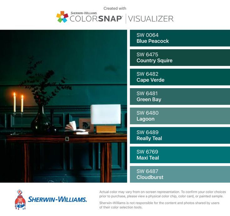 I Found These Colors With ColorSnap®️️ Visualizer For