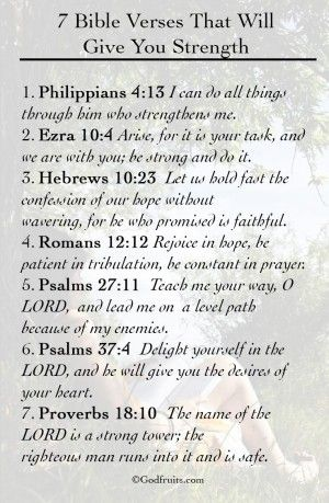 Bible Verses for Strength: 12 Bible Strength Quotes