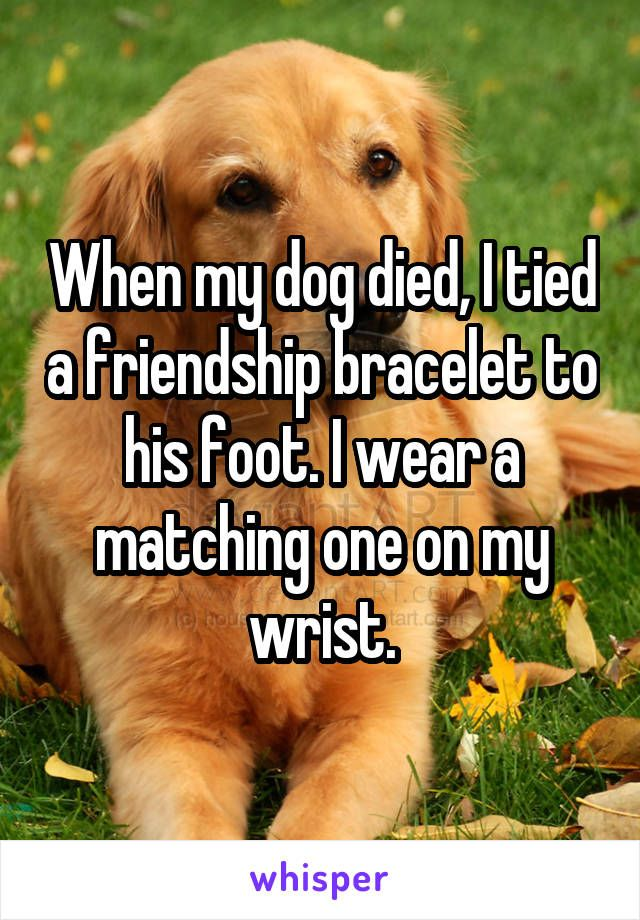 """When my dog died, I tied a friendship bracelet to his foot. I wear a matching one on my wrist."""