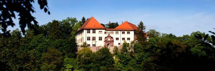 Home, Schloss Neuenbürg