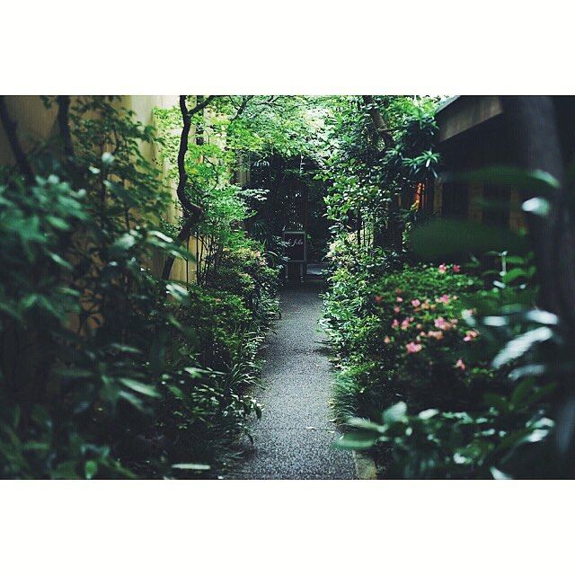 my Kyoto travel with Kindle  / wine shop  仕事を無事終えて  錦市場でお買物  生麩京野菜白味噌湯葉に穴子寿司  有次のおろし金も  周辺をお散歩  エントランスが素敵なワインショップ  Closedしてたのに  快く見せていただいて  人の優しさにもほっこり  #haveKINDLEwillTRAVEL   #miki_travel_life  #miki_kyoto_2015   #miki_life  #sonya7  #CarlZeiss  #vscocam by miki_rollei_life