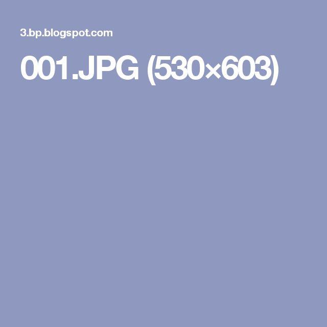 001.JPG (530×603)