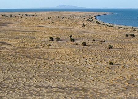Если вы окажетесь возле озера Туркана, основная часть которого находится на территории Кении, велика вероятность, что вы подумаете, что попали на берег моря. Волны на воде, песчаный пляж и бесконечная водная поверхность. Сильный ветер и покачивающиеся рыбацкие лодки, готовые отчалить от берега. Чем не море?