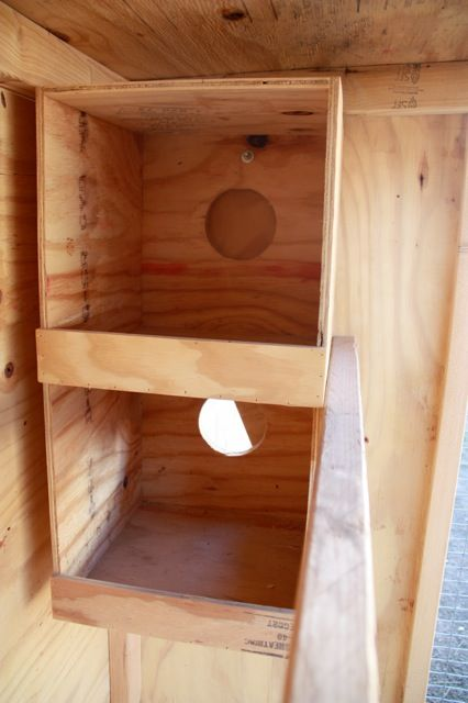 Raising Dick and Jane: DIY Chicken Coop Design {Guest Post by Colleen from Five Little Homesteaders}