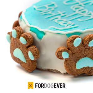 pasteles-para-perros                                                                                                                                                                                 Más