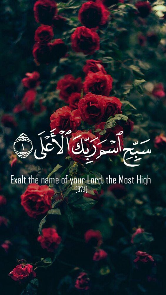 Wallpapers Allah Name Roses