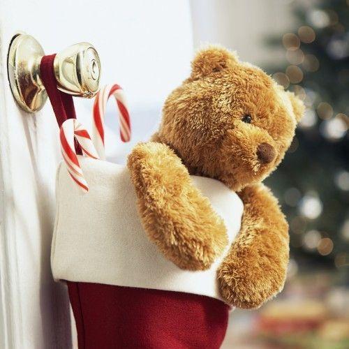 teddyChristmas Cards, Christmas Teddy, Teddy Bears, Two People, Bears Ideas, Christmas Stockings, Christmas Doors Decor, Christmas Decor, Christmas Ideas