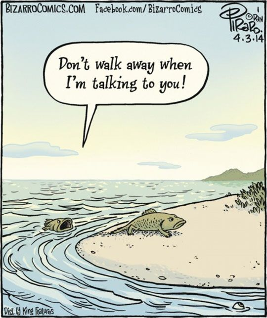Don't walk away when I'm talking to you! This Is Why Evolution Started.
