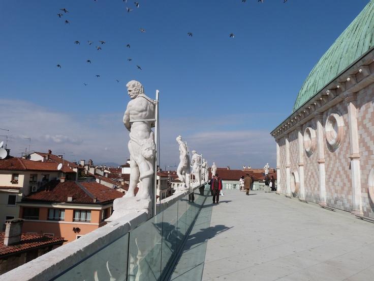Terrazza, lato ovest / Images © Musei Civici Vicenza