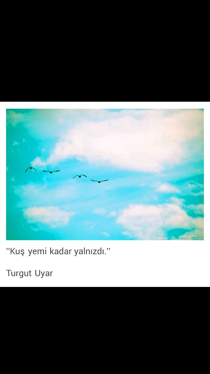 Kuş yemi kadar yalnızı Turgut Uyar