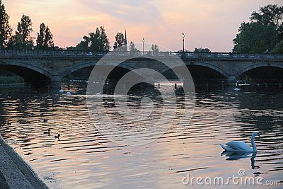 A beautiful lake with a bridge at sunset in Hyde Park, London.