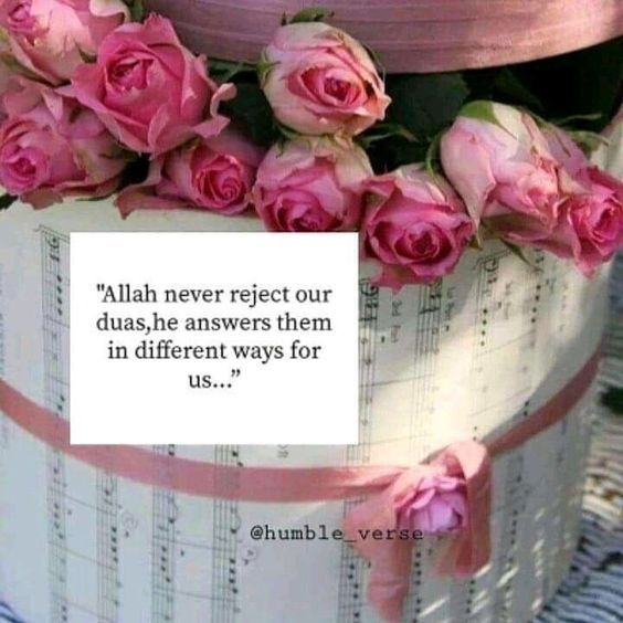 Pin by Nikah Explorer on Cute pictures (With images