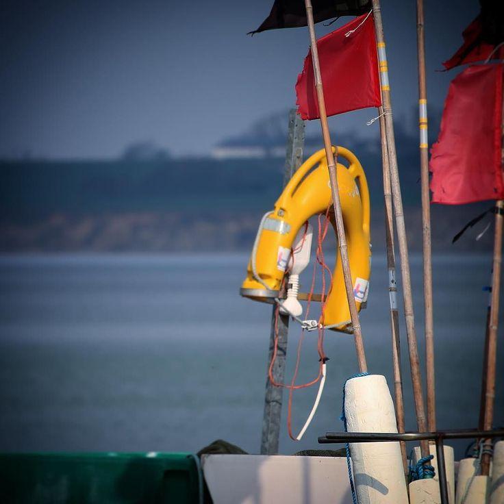 Fiskegrej ved Agernæs Havn #forår #visitdenmark #fyn #nature #nature_perfection #naturelovers #mothernature #natur #loves_skyandsunset #loveit #denmark #danmark #dänemark #landscape #assensnatur #mitassens #vildmedfyn #fynerfin #vielskernaturen #visitassens #instapic #picoftheday #spring #assens #fishing #sea