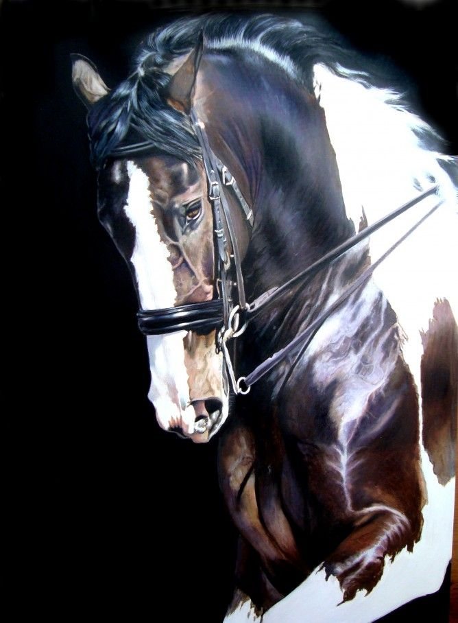 horse artists - Google Search