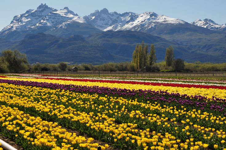 Trévelin, Provincia de Chubut, Argentina.  Es una ciudad ubicada en la Patagonia, República Argentina.