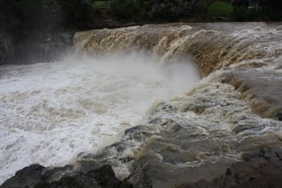 Photos of Haruru Falls, Paihia - Attraction Images - TripAdvisor