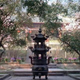 What is a Buddhist Temple like? Visit some Chinese temples online and find out!