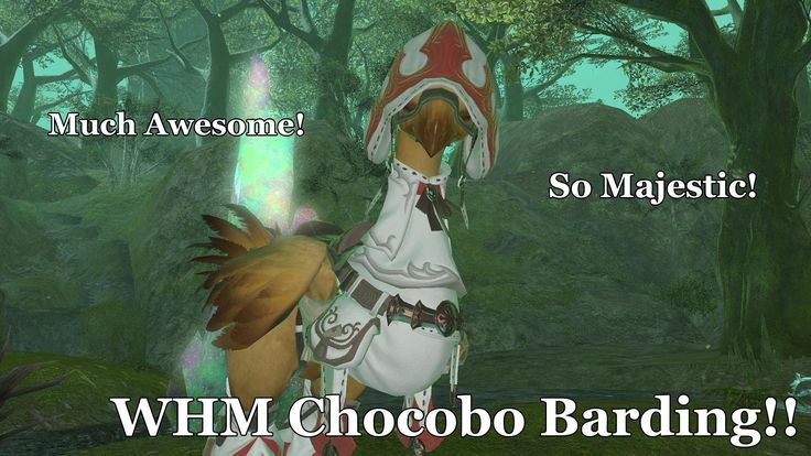 how to call chocobo ff15