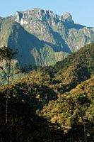 Parque Nacional Natural Tatamá. El Chocó Biogeográfico se extiende hasta las altas cumbres de la cordillera Occidental.