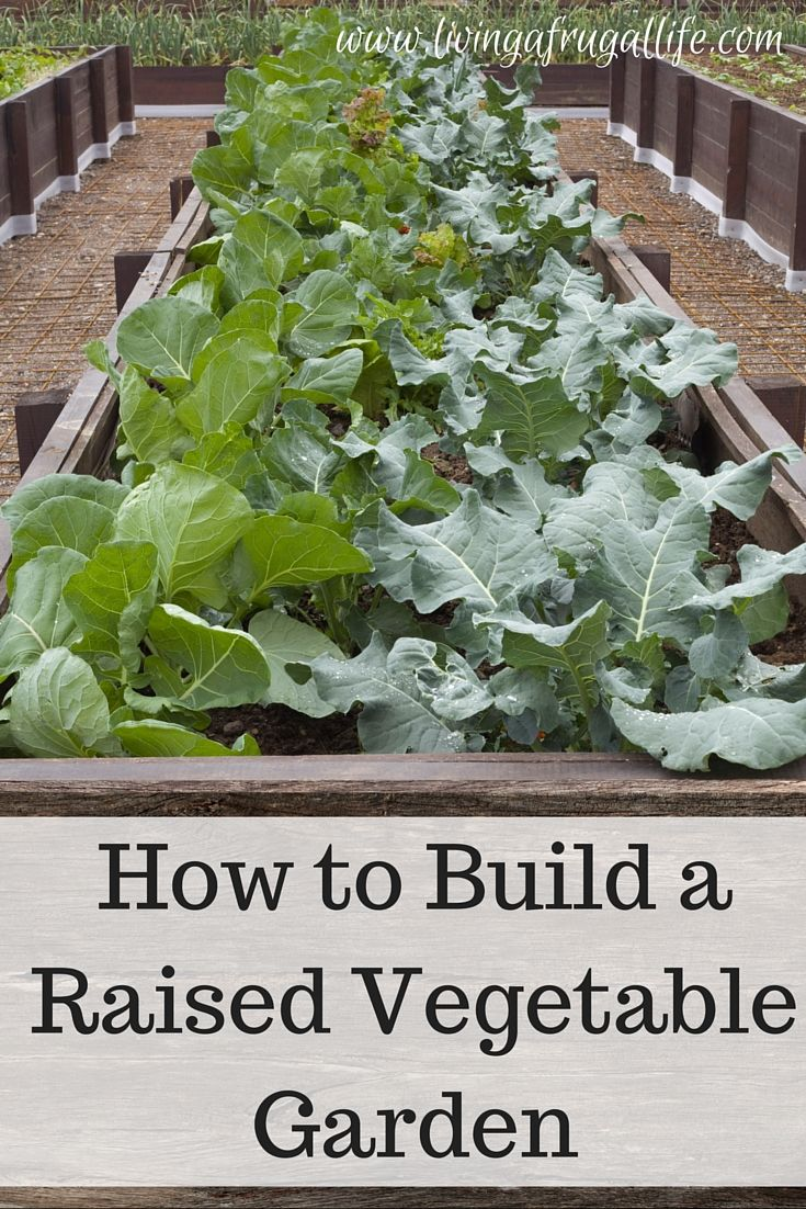 72 Best Images About Gardening Preserving On Pinterest Gardens Vegetables And Vegetable Garden