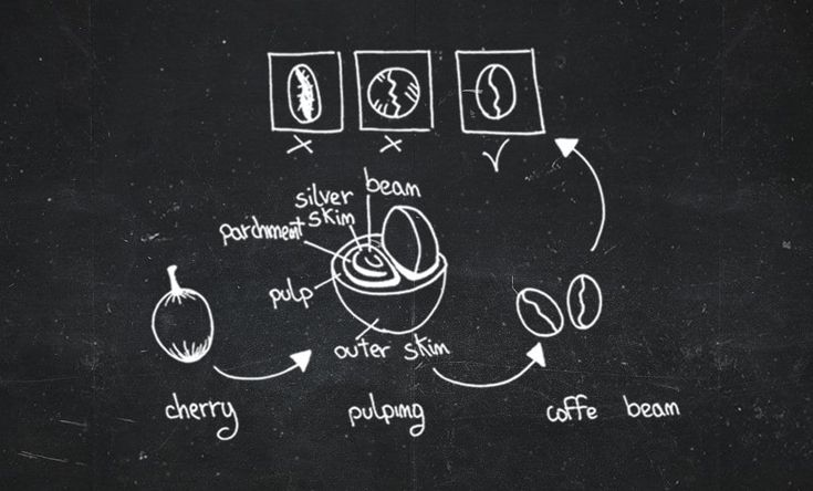 coffee grading - http://angelocarbone.eu/coffee-grading/