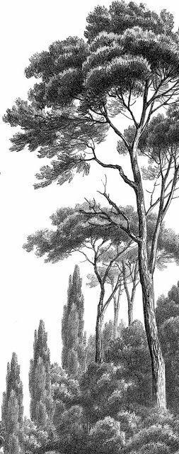 Dictées d'autrefois: Classe de 5ème - Dictée N°1 - L'arbre (Théodore de...