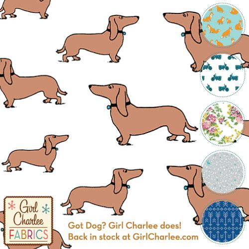 Got Dog? Girl Charlee does! Back in stock as part of our new Modern Air collection. Available only at http://bit.ly/gcGotDog