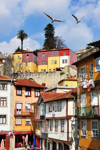 Miragaia traditional quarter. Oporto, Portugal