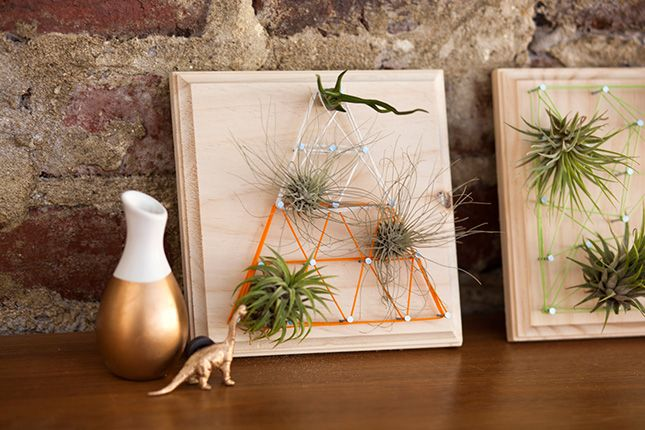 Air Plants + String Art = Living Wall Art! via Brit + Co.