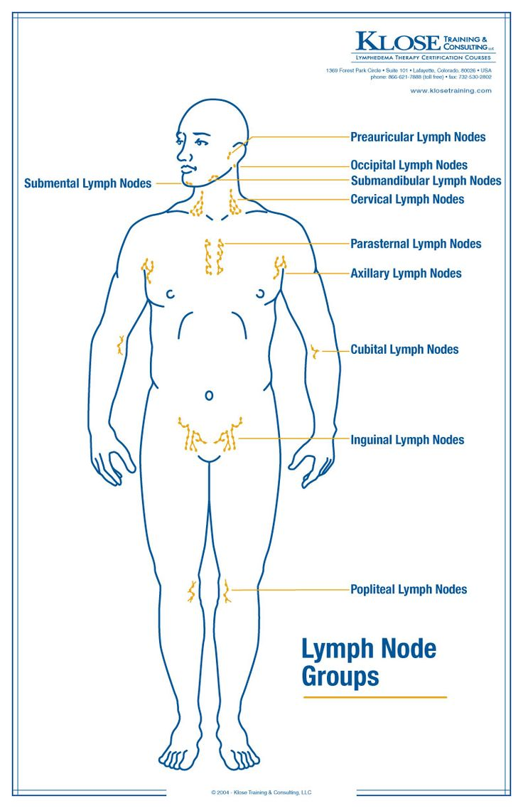 My Life With Lymphedema Lymphatic Drainage Of The Neck Manual Guide