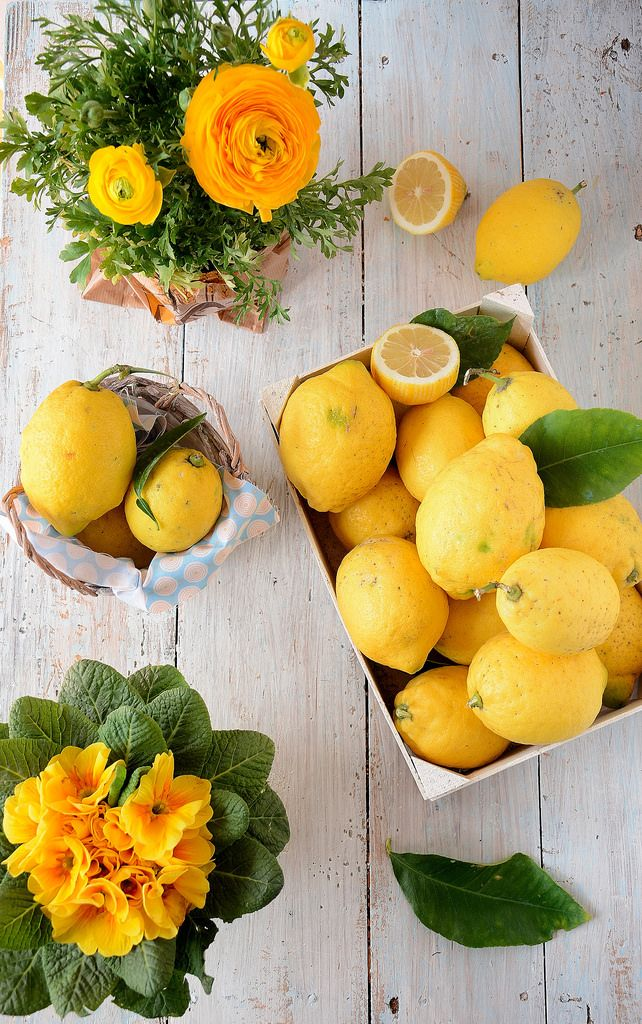 limoni_marzo - Laura Gioia